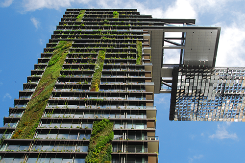 looking up at a multi-story building with plants growing in the exterior building cladding